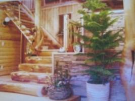 春野木材加工協業組合